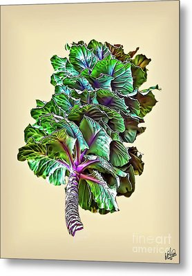 Metal Print featuring the photograph Decorative Cabbage by Walt Foegelle