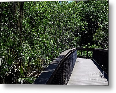 Metal Print featuring the photograph Enchanted Walk by Gary Wonning