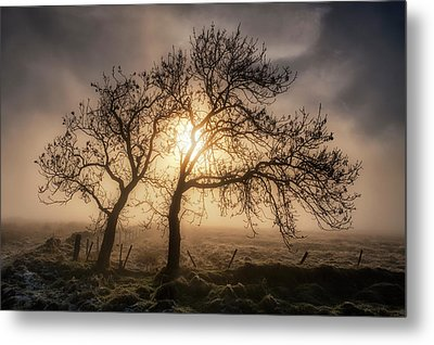 Metal Print featuring the photograph Foggy Morning by Jeremy Lavender Photography