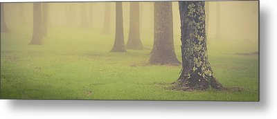Metal Print featuring the photograph Foggy Trees Pano by Joye Ardyn Durham