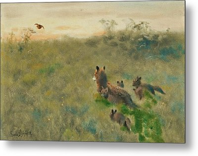 Fox Family On The Hunt Metal Print