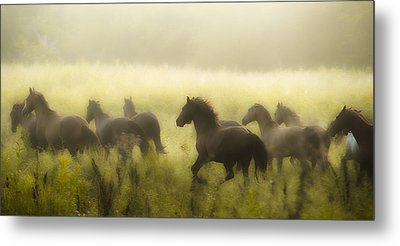 Freedom Metal Print by Ron  McGinnis