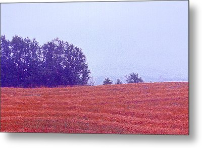 Metal Print featuring the photograph Freshly Cut Hay Ae by Lyle Crump