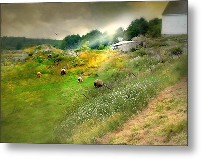 Grazing In The Grass Metal Print