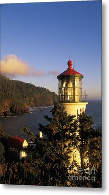 Heceta Head Lighthouse Metal Print by Greg Vaughn - Printscapes