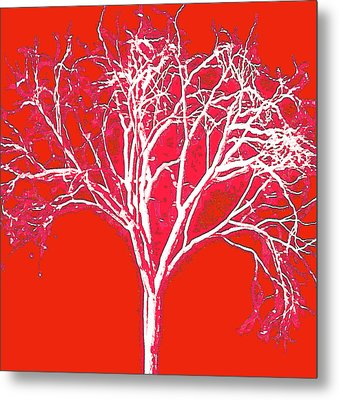 Imagination Tree Metal Print by James Mancini Heath