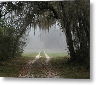 Into The Light Metal Print by Peg Urban