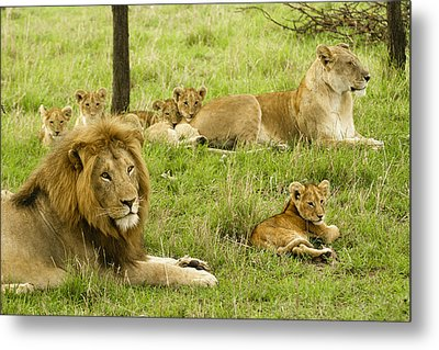 It's All About Family Metal Print by Michele Burgess