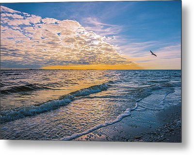 Metal Print featuring the photograph Leading Edge by Steven Ainsworth