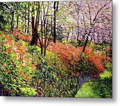 Magic Flower Forest Metal Print by David Lloyd Glover
