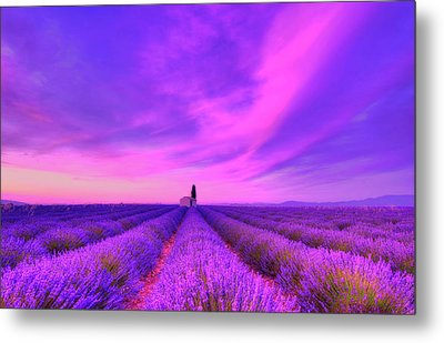Magical Fields Metal Print