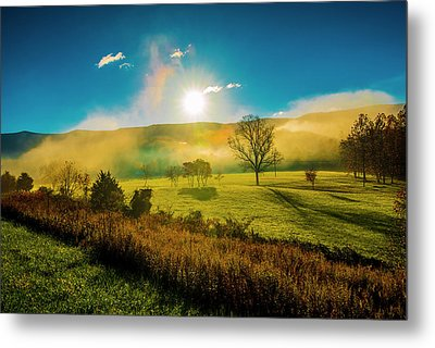 Metal Print featuring the photograph Mist Rising by Steven Ainsworth