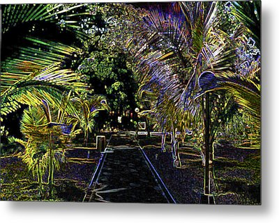 Metal Print featuring the digital art Night In Mexico by Tammy Sutherland