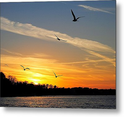 November Sunset Metal Print by Frozen in Time Fine Art Photography