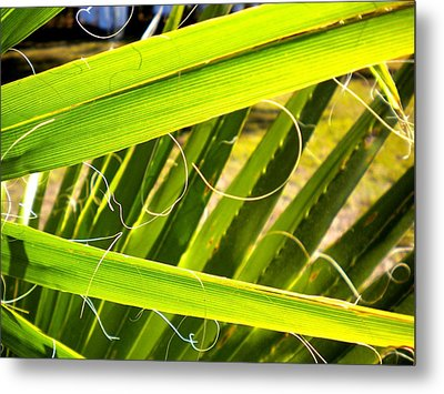 Metal Print featuring the painting Palmetto 3 by Renate Nadi Wesley