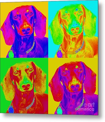 Pop Art Dachshund Metal Print