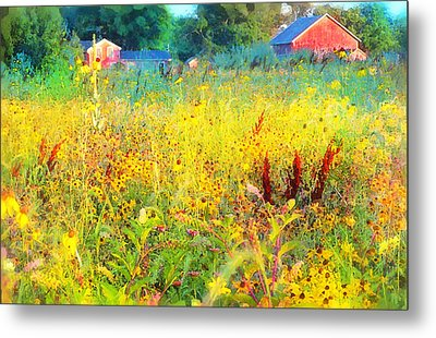 Prairie Farm House Metal Print