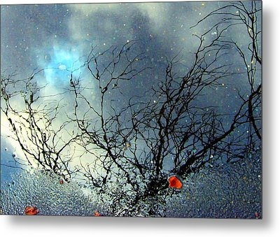 Puddle Art Metal Print by Dale   Ford
