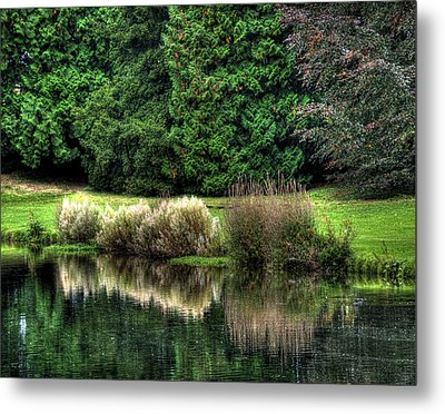 Metal Print featuring the photograph Reflected by Gouzel -