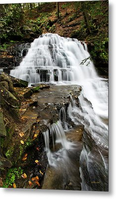 Metal Print featuring the photograph Salt Springs Waterfall by Christina Rollo