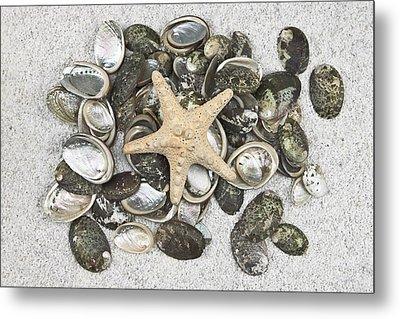 Seashells Metal Print by Joana Kruse
