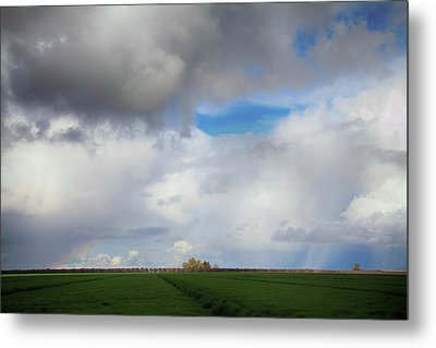 Skyward Metal Print by Laurie Search