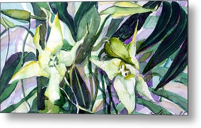Spider Orchids Metal Print by Mindy Newman