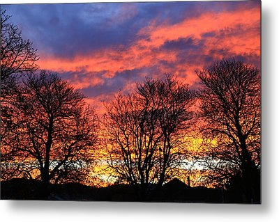 Metal Print featuring the photograph Sunset And Filigree by Nareeta Martin