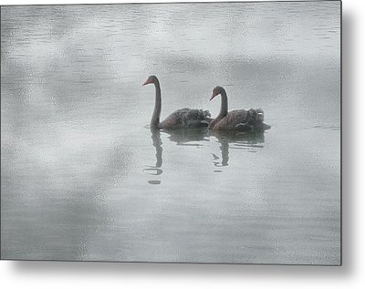 Metal Print featuring the photograph Swan Lake by Carolyn Dalessandro