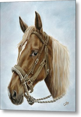 Metal Print featuring the painting The Boss' Mount by Cathy Cleveland