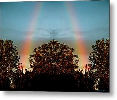 The Rainbow Effect Metal Print by Sue Stefanowicz