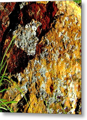 Metal Print featuring the photograph The Rock by Lenore Senior