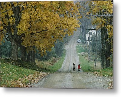 Untitled Metal Print by B. Anthony Stewart