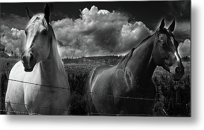Us Metal Print by Jerry Cordeiro
