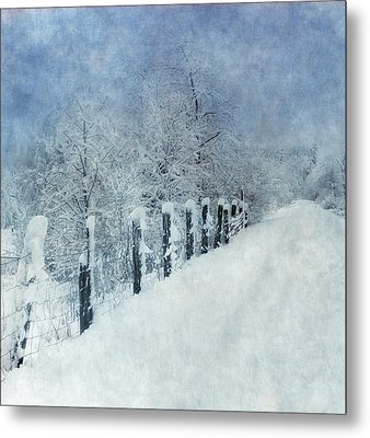 Metal Print featuring the photograph Winter by Angie Vogel