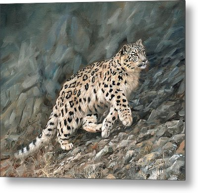 Metal Print featuring the painting Snow Leopard by David Stribbling