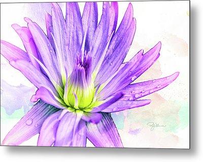 10889 Purple Lily Metal Print
