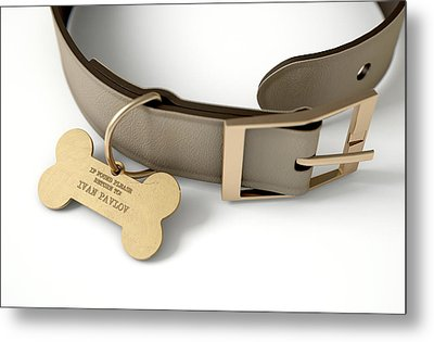 Leather Collar With Tag Metal Print