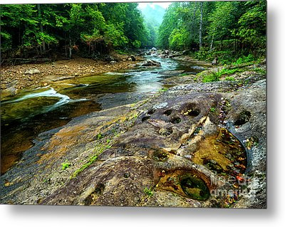 Metal Print featuring the photograph Williams River Summer by Thomas R Fletcher
