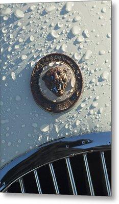 1954 Jaguar Xk120 Roadster Hood Emblem Metal Print by Jill Reger