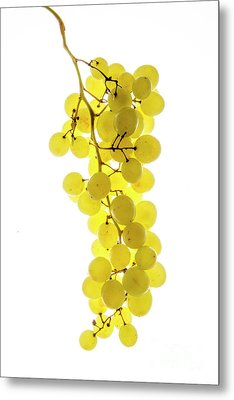 Bunch Of White Grapes Metal Print