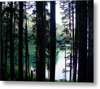 Mountain Lake Metal Print