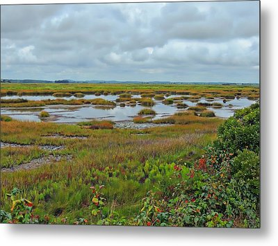 Plum Island Metal Print by Marcia Lee Jones