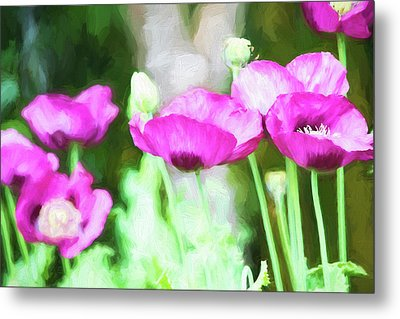 Metal Print featuring the painting Poppies by Bonnie Bruno