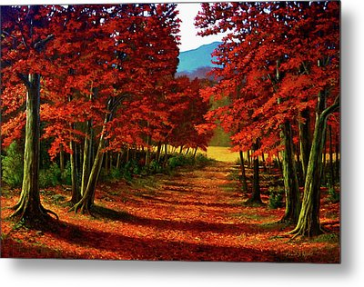 Road To The Clearing Metal Print by Frank Wilson