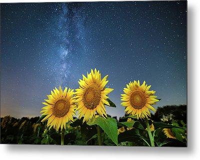 Sunflower Galaxy Metal Print by Ryan Heffron