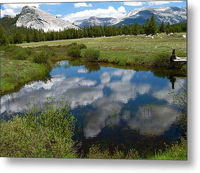 Tuolumne Meadows Metal Print by Amelia Racca