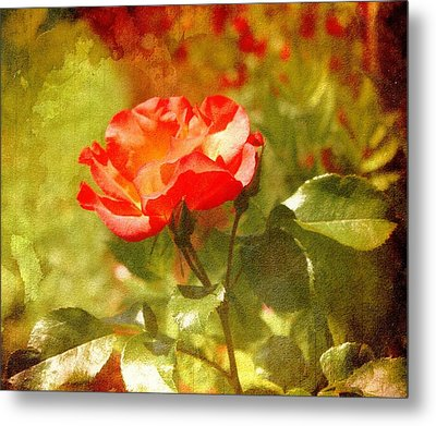 Vintage Rose Metal Print by Cathie Tyler