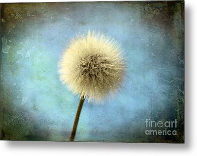 Wish Of A Lifetime Metal Print by Krissy Katsimbras