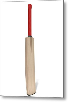 Cricket Bat Metal Print